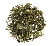 Georgia Wild Forest White tea 50 gram